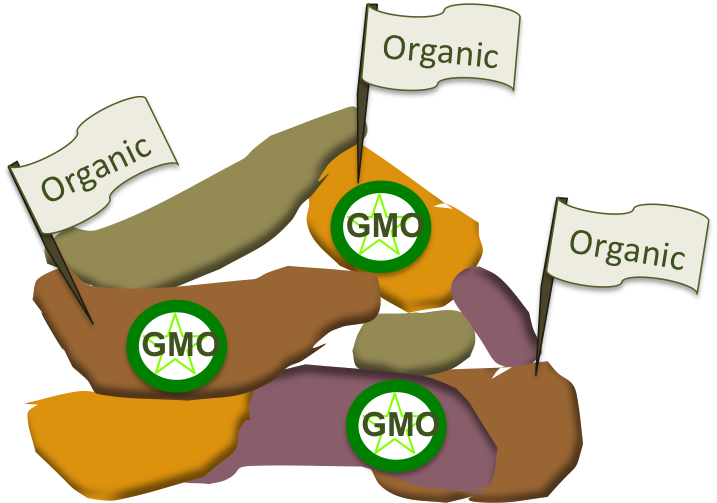What is a GMO? – Escaping The Bench